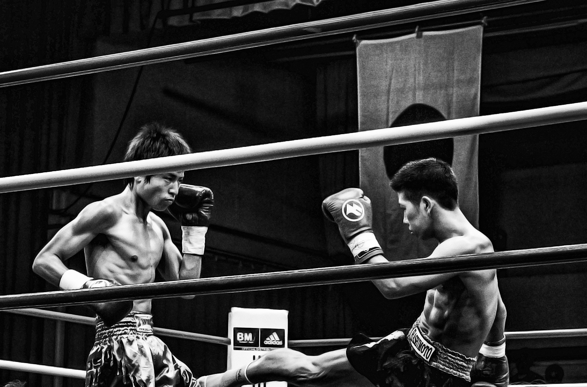 Photograph In the Ring 5 by Mario Acevedo on 500px