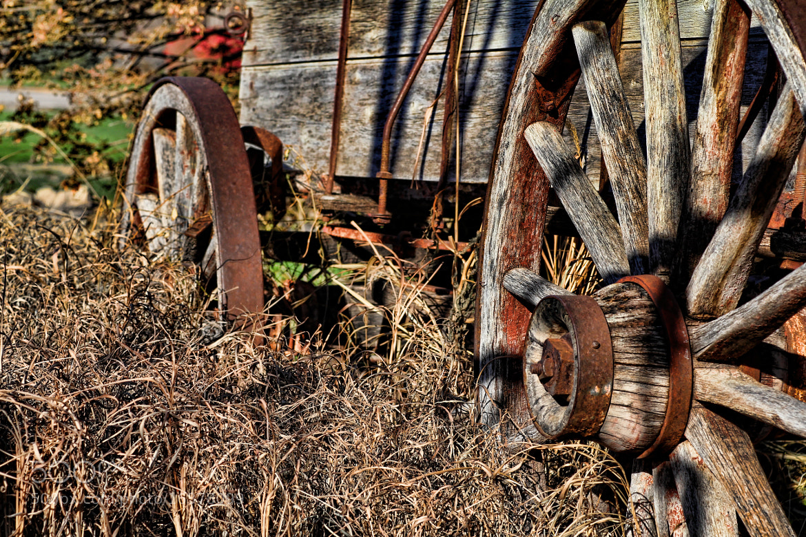 Photograph autumn wagon by Parker Mitchell on 500px