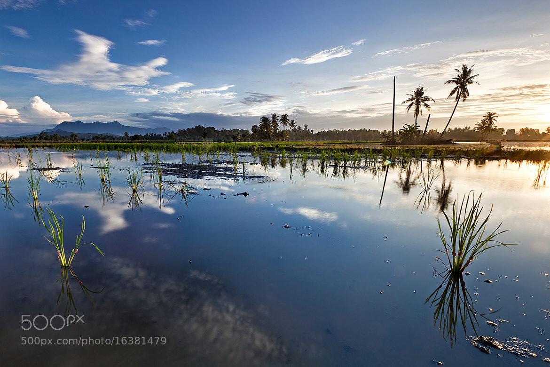 Photograph Gunung Jerai by jihhaur lio on 500px