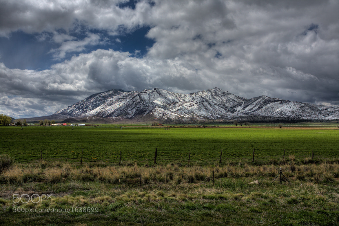 Photograph From Grass to Snow by Peter Lawton on 500px