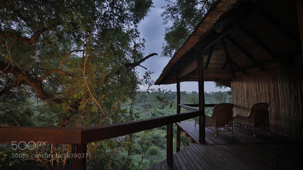 Photograph Londolozi tree house by Philip Bloom on 500px