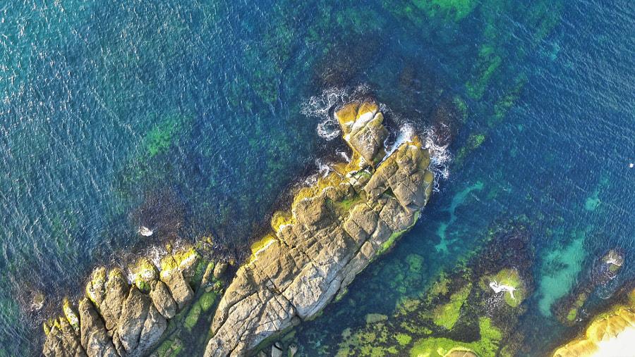 On the rocks... by Alper Ergin on 500px.com