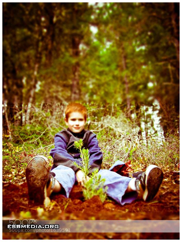Photograph Ashton Plating A Tree #3 by ESB Media on 500px