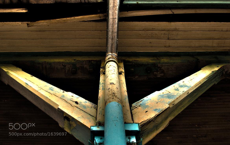 Photograph Three Legs by Gustavo Mondragon on 500px