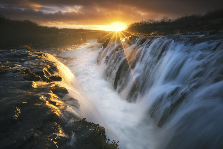 Resurrect by William Patino on 500px.com