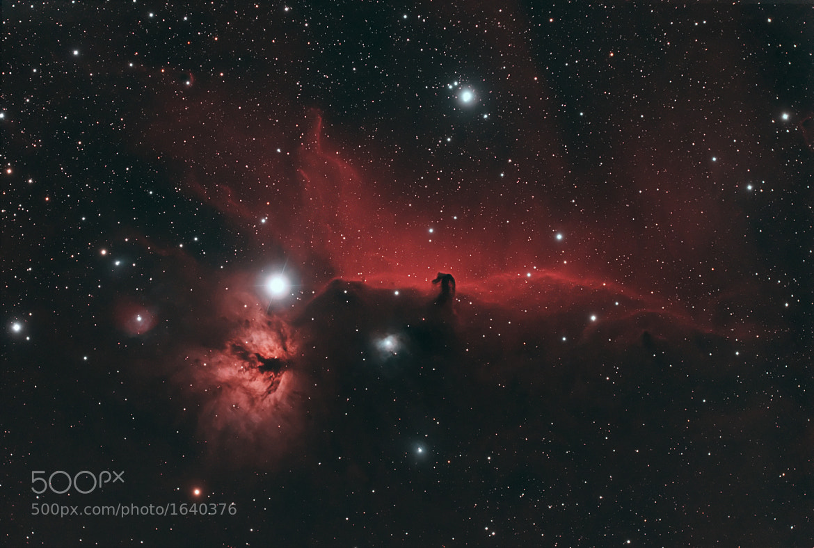 Photograph IC434 - The Horsehead Nebula by Eric Elberson on 500px
