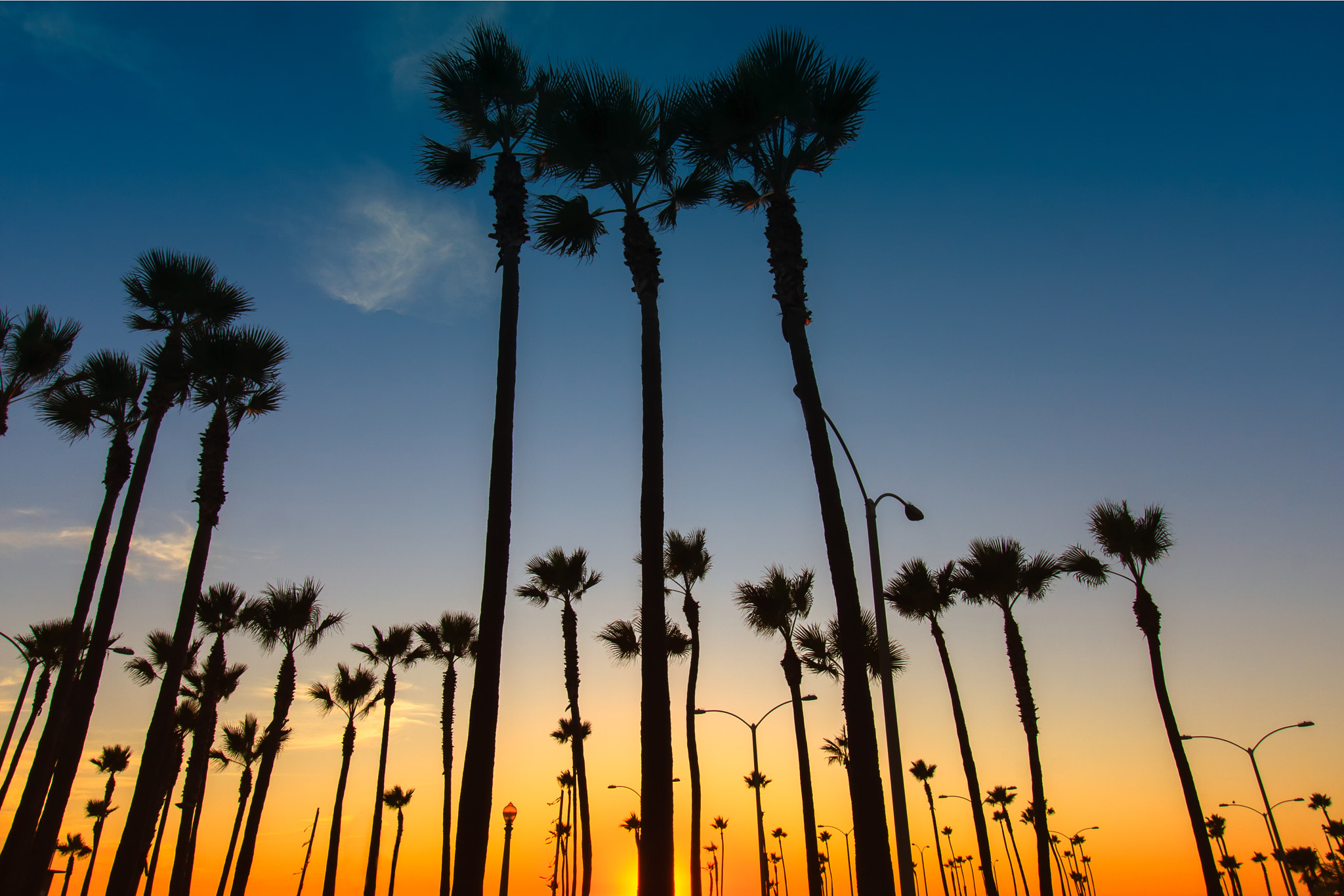 Photograph Reach For The Sky by Corey Thompson on 500px