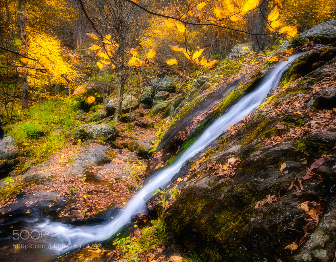 Photograph Dark Hollow Falls by Stevan Tontich on 500px