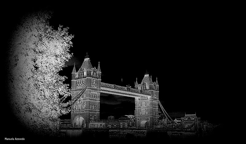 Photograph My view of the London Tower. by Manuela Azevedo on 500px