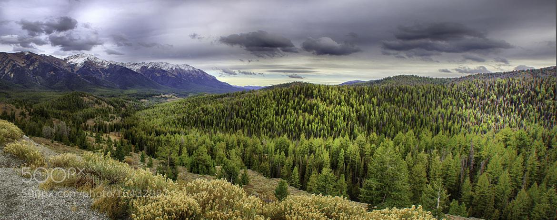 Photograph Just Below Galena Summit by Kristi  Paulson on 500px
