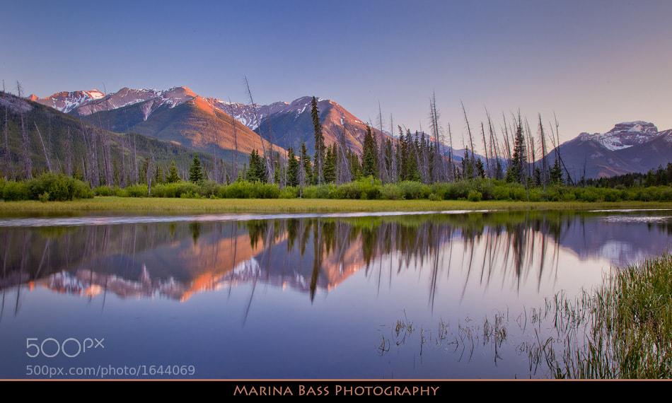 Photograph Vermillion Lakes by Marina Bass on 500px