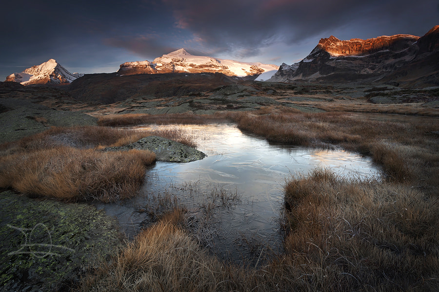Photograph Good Morning ! by Emmanuelle Gerber on 500px