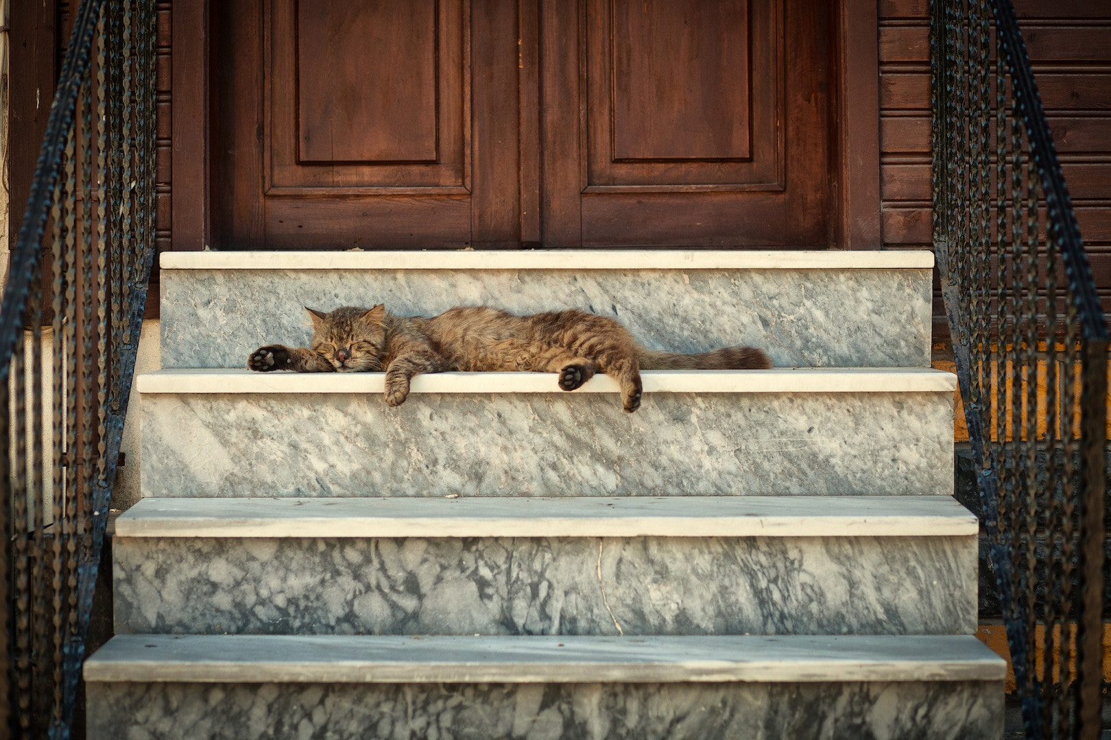 Photograph Lazyness by Romain Winkel on 500px