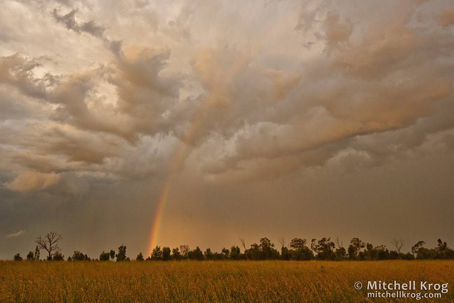 Photograph Pot of Gold? by Mitchell Krog on 500px