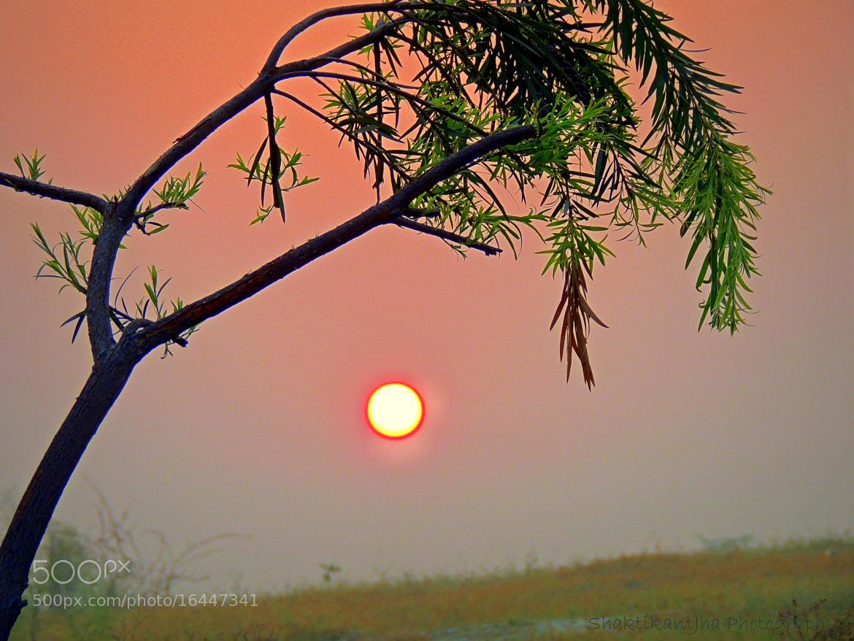 Photograph A beautiful morning by Shaktikant Jha on 500px