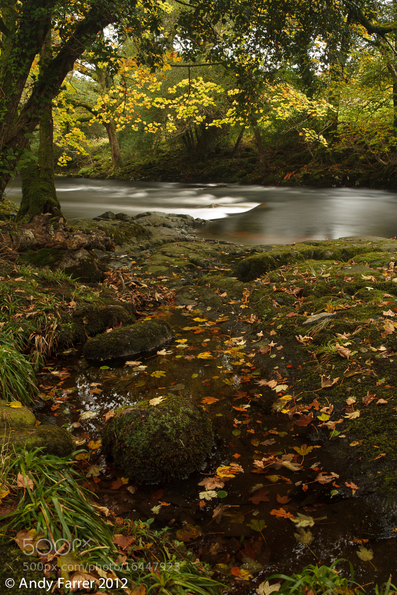 Photograph River Dart by Andy Farrer on 500px
