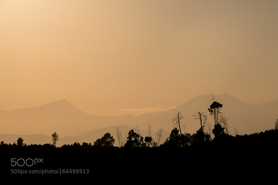 Desolate Hill by Stefano9712