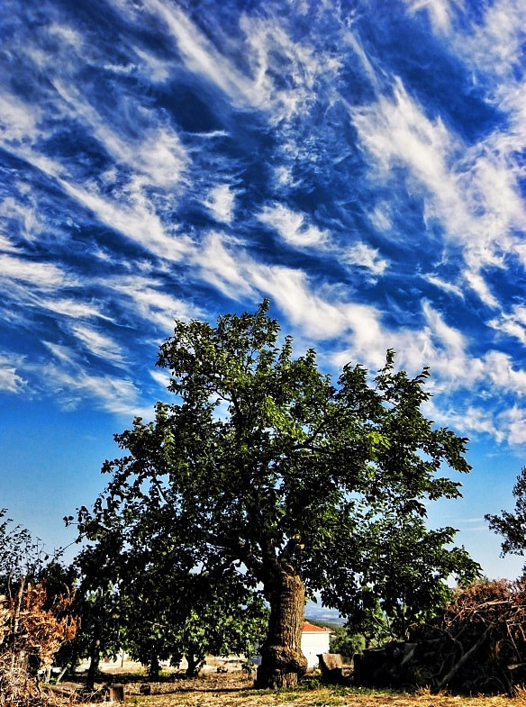 Photograph dance of the clouds by Sedat Ozdemir on 500px