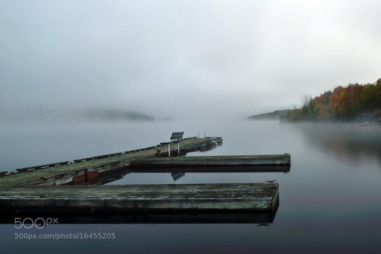 Photograph morning gloom by Andrzej Pradzynski on 500px