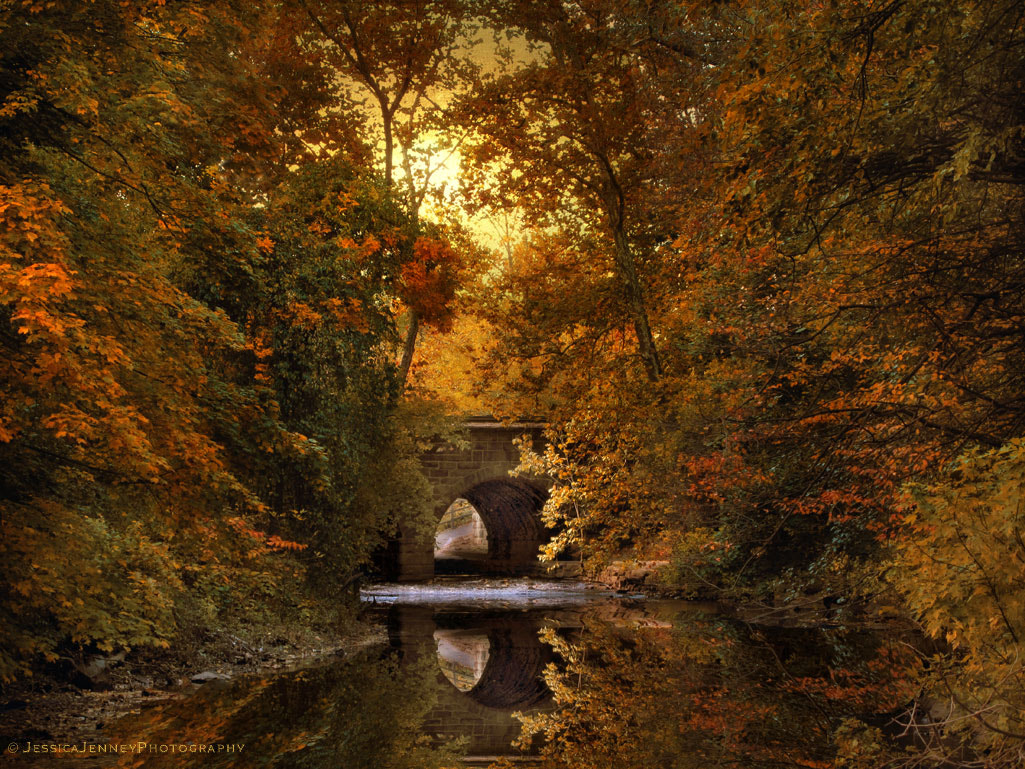 Photograph Reflections on October by Jessica Jenney on 500px
