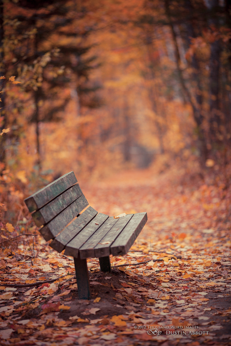 Photograph Have a Seat by Dustin Abbott on 500px