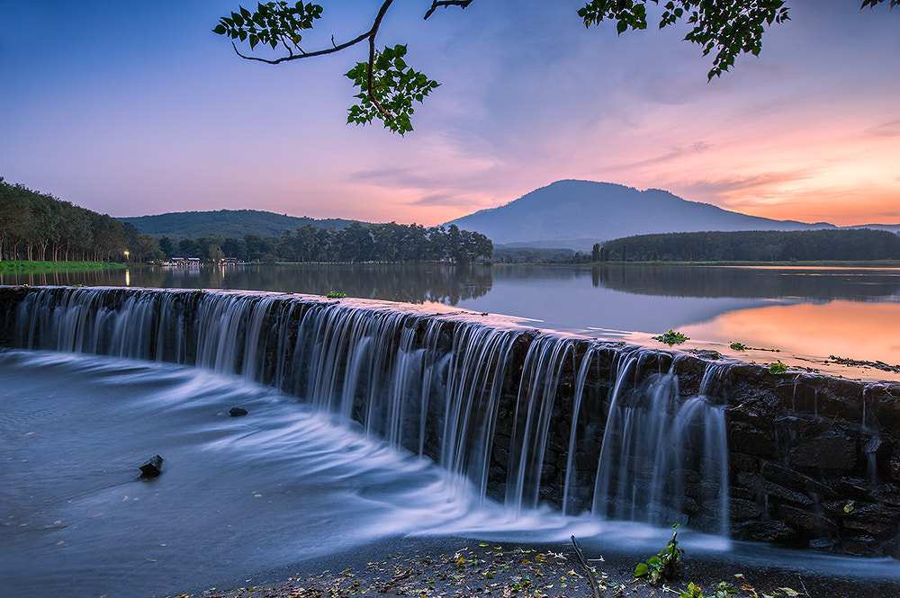 Photograph The Park by pick chon on 500px