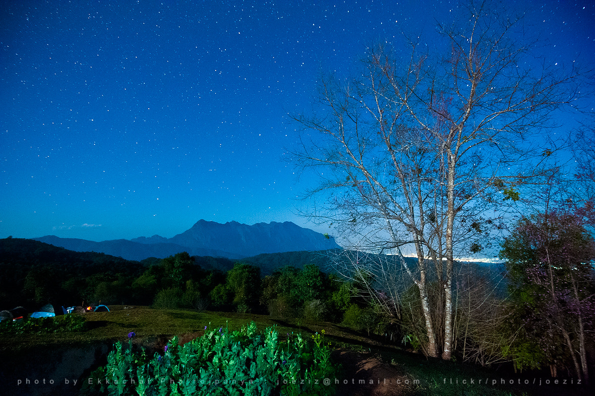Photograph Star @ Doi Mae taman by Ekkachai Pholrojpanya on 500px