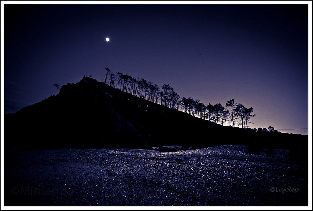 Photograph Moonlight by Luis Cabal on 500px