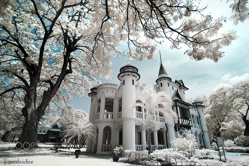 Photograph The Palace by Dee Bunpha on 500px