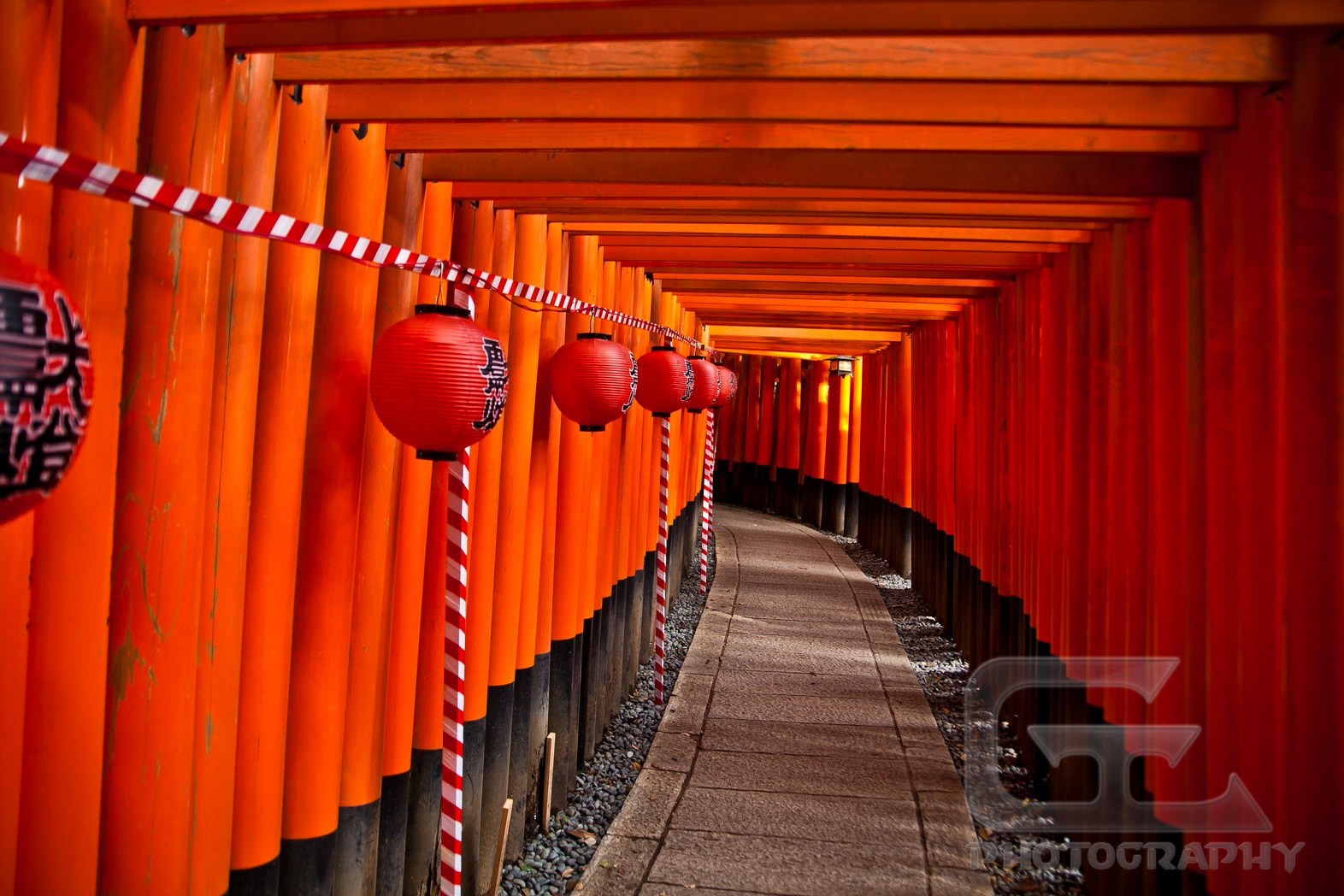 Photograph Torii path by Guillaume Catella on 500px