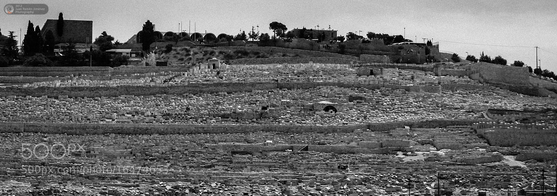 Photograph Tombs on the Mount of Olives by Juan Ramón Jiménez on 500px