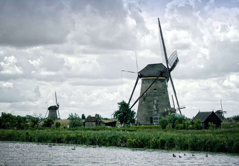 Photograph Kinderdijk by Alessandro Castellani on 500px