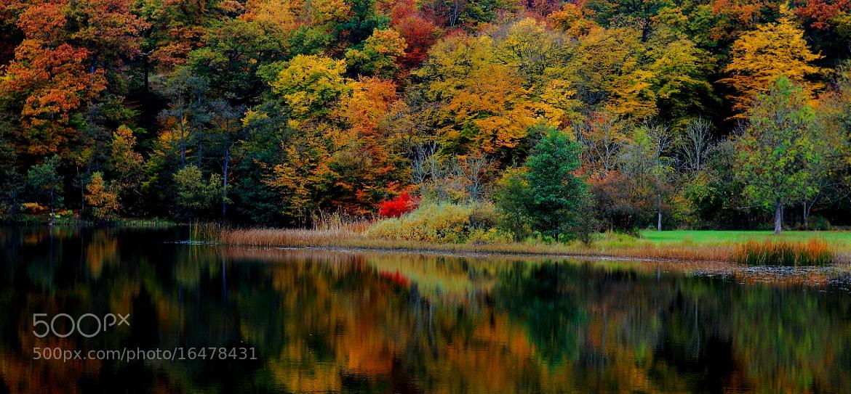 Photograph Autumn colors by Berit Nielsen on 500px
