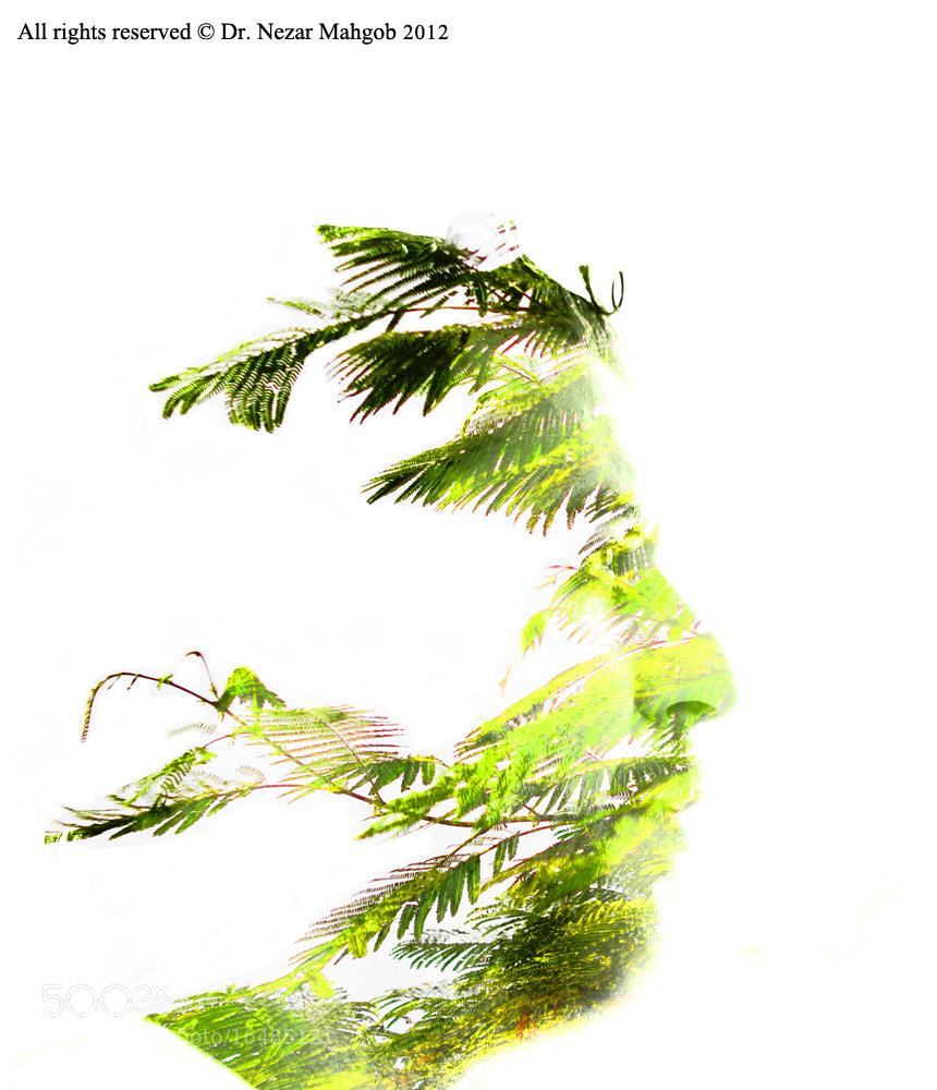 Photograph Be Green by Nezar Mahgob on 500px