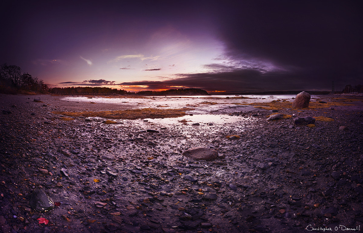 Photograph Sally Cove by Christopher O'Donnell on 500px