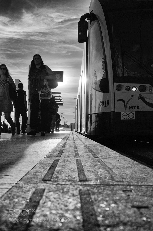 Photograph Powerlines by Nuno Zuzarte on 500px