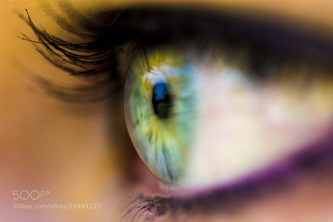 Photograph eyes macro :) by Murilo Folgosi on 500px