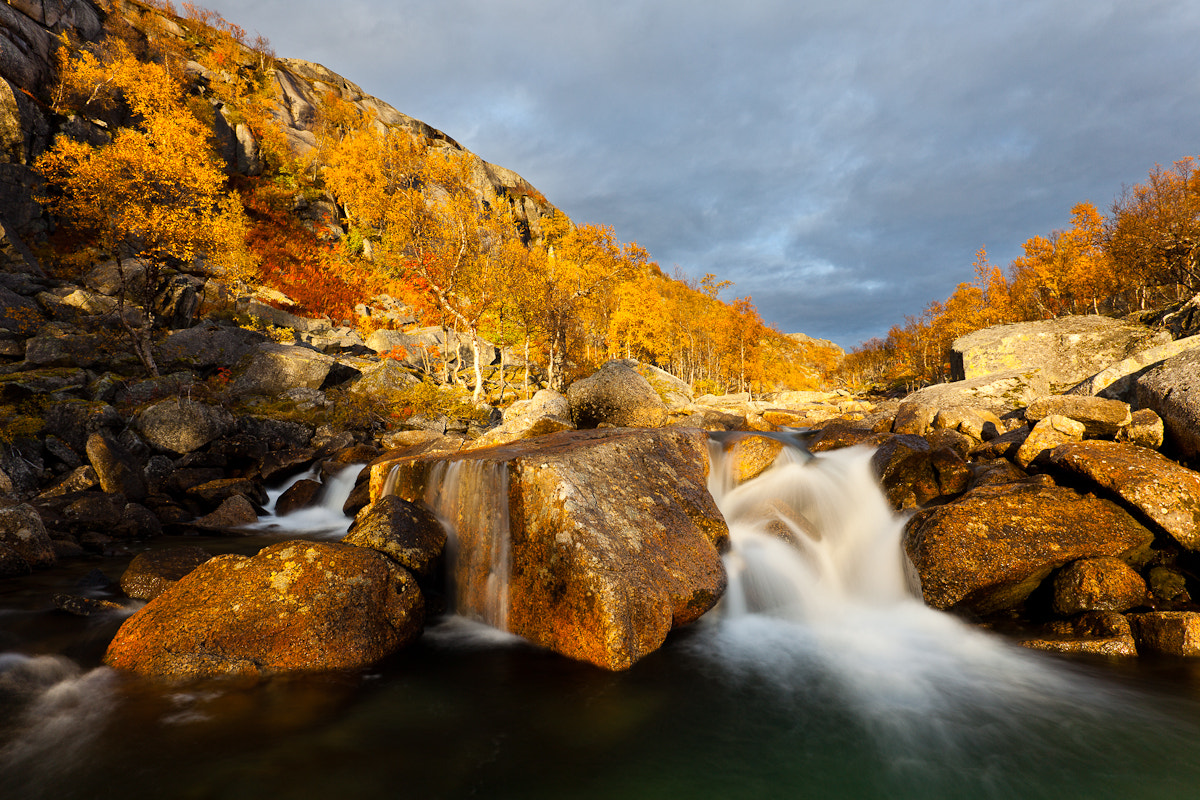 Photograph Golden Mountain River by Jaak Sarv on 500px