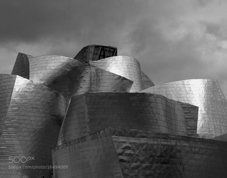 Photograph Guggenheim Bilbao by JuanMa Hernanz on 500px