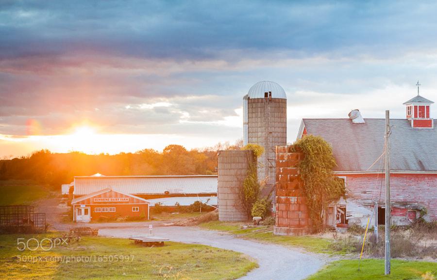 Photograph The Sunshine Dairy, Newbury, Massachusetts by Stanton Champion on 500px