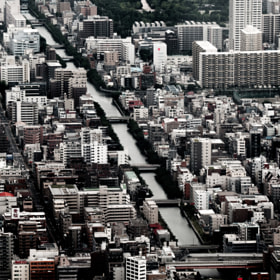 Aerial view of Tokyo City