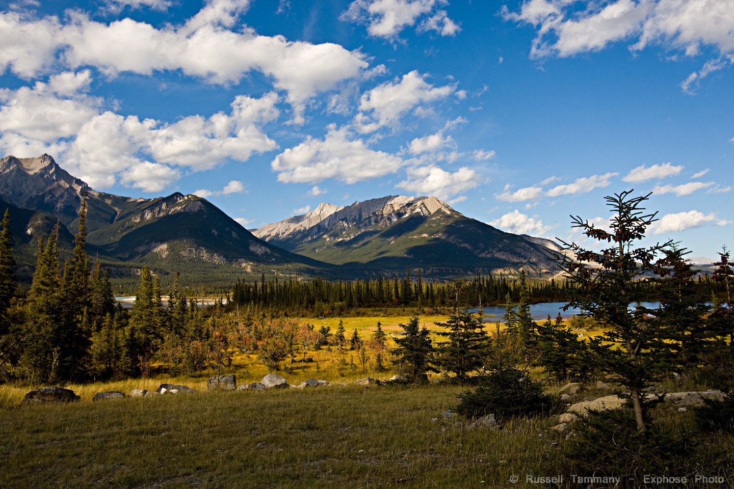 Photograph Fall in Alberta by Russell Tammany on 500px