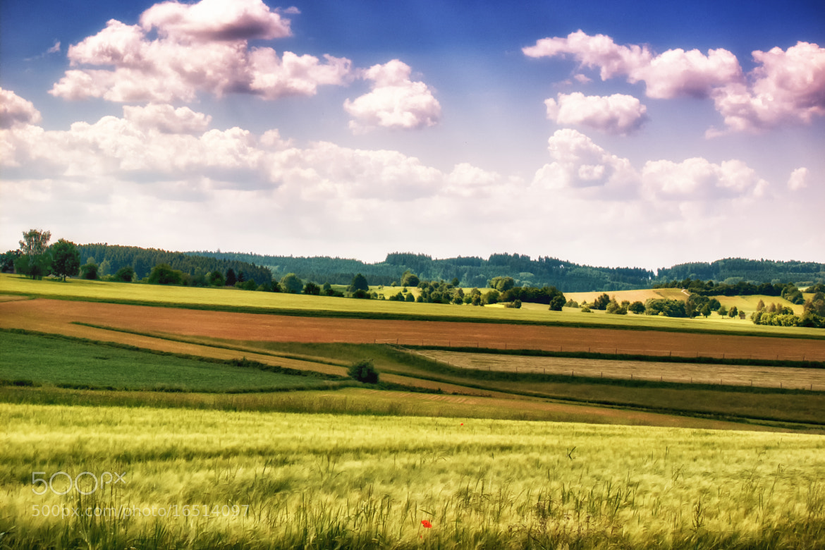 Photograph Fields by Georg Tueller on 500px