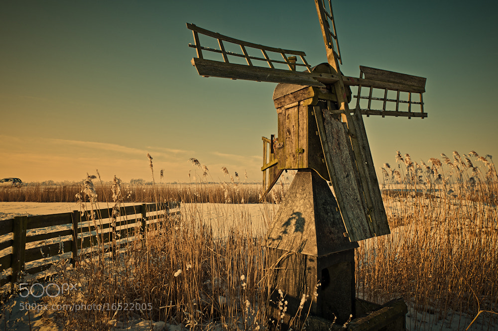 Photograph Warm Winter Light by Allard Schager on 500px