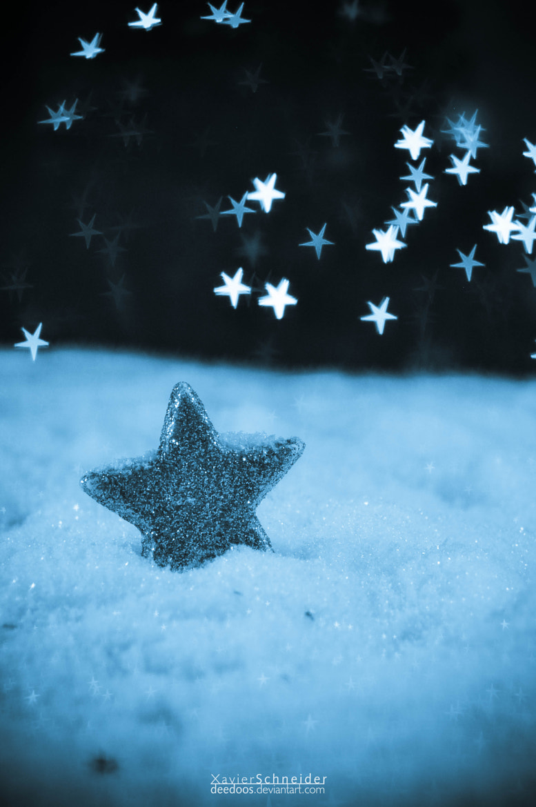 Photograph A star in the snow by Xavier Schneider on 500px