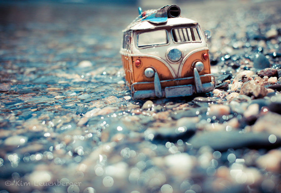 I want the whole world to celebrate! by Kim Leuenberger on 500px.com