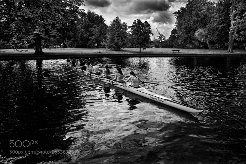 Photograph Rowing by mario pignotti on 500px