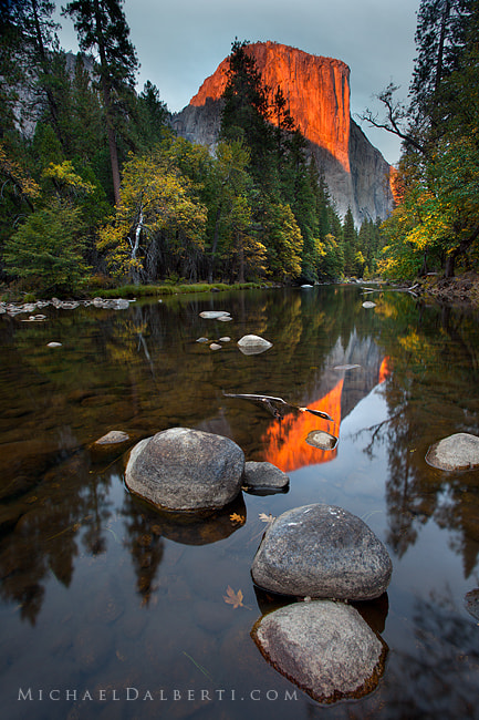 Photograph El Capitan by Michael Dalberti on 500px