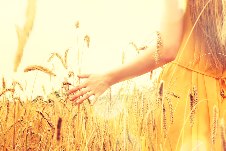 Beautiful woman on a cornfield by Natalia on 500px.com