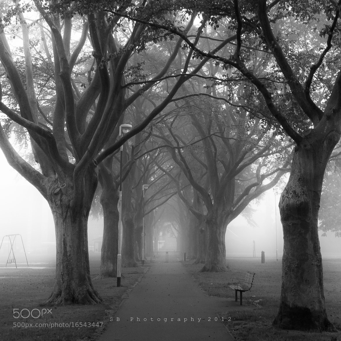 Photograph Misty Park by Sean Byrne on 500px